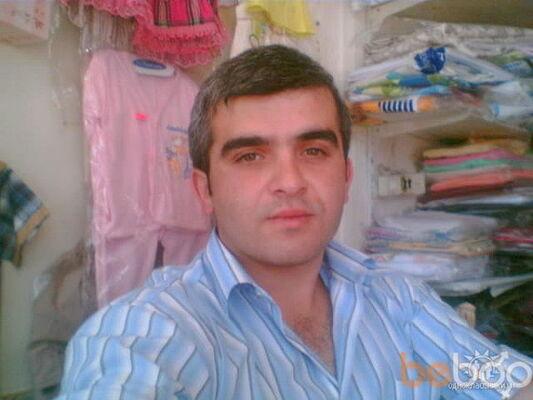 ���� ������� samir, ������, �����������, 33
