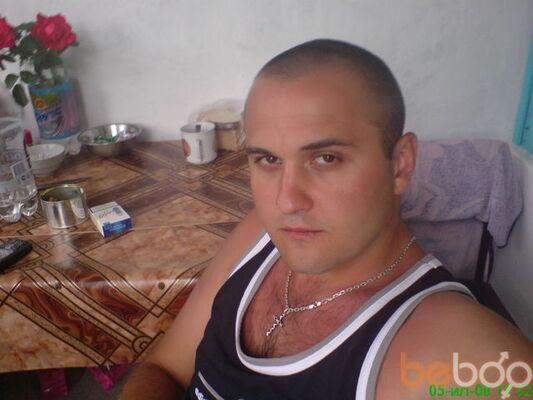 ���� ������� Gricsha, ����, �������, 34