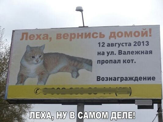 Фото мужчины Алекс, Львов, Украина, 36