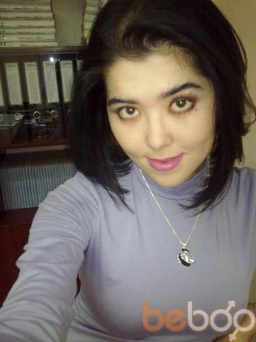 ���� ������� Leyla, �������, ����������, 31
