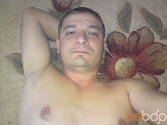 ���� ������� vitali, �����������, ������, 41