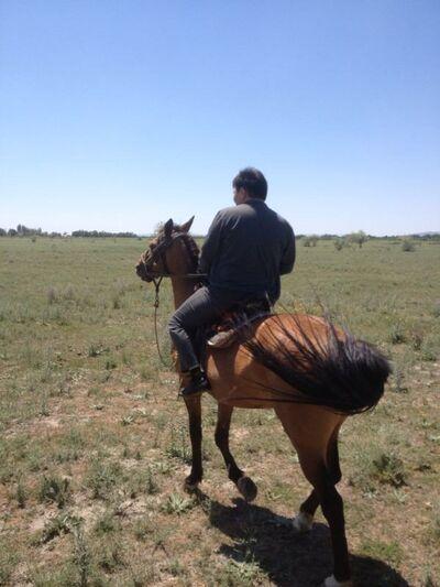 Фото мужчины Алан, Алматы, Казахстан, 30