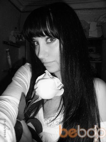 ���� ������� Nika, ���������, ������, 24