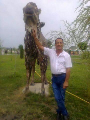 ���� ������� Efqan, ����, �����������, 55