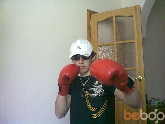 ���� ������� boxer, �����������, ������, 26