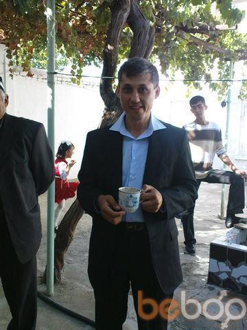 ���� ������� dilik, �������, �����������, 43
